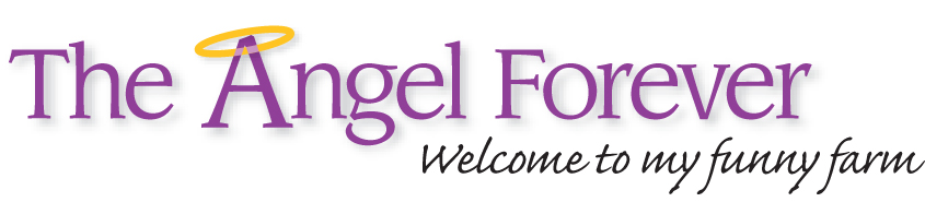 The Angel Forever - Welcome to my funny farm!