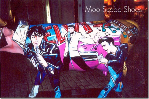 Moo Suede Shoes 2