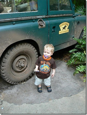 Toddler JSL at Disney's Animal Kingdom