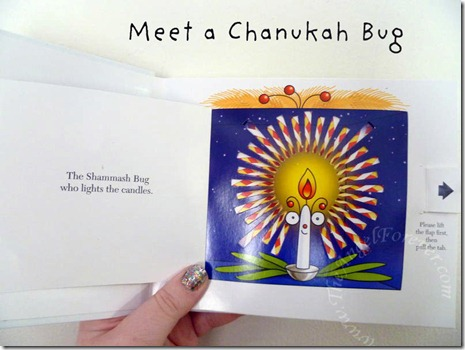 Hello Chanukah bug