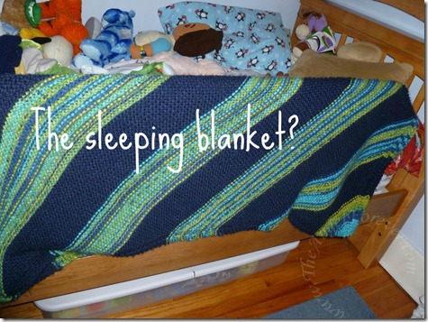 Sleeping blanket perhaps