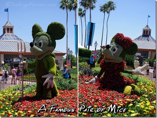 Mickey and Minnie in Flowers