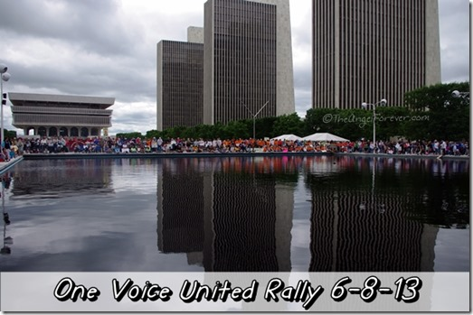 One Voice United Rally in Albany 6-8-13