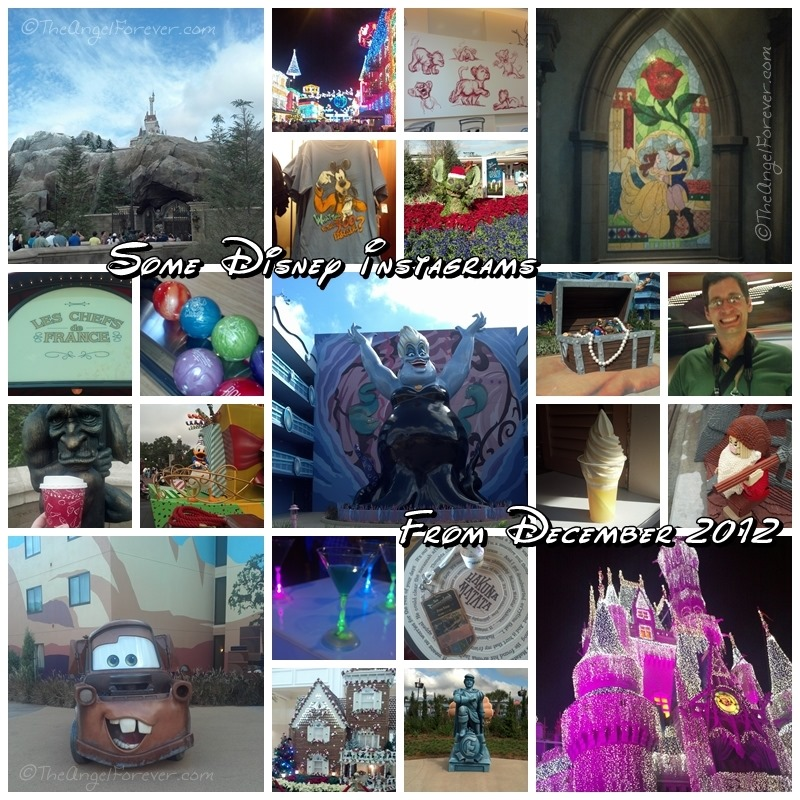 Disney Instagrams Collage from New Fantasyland Celebration