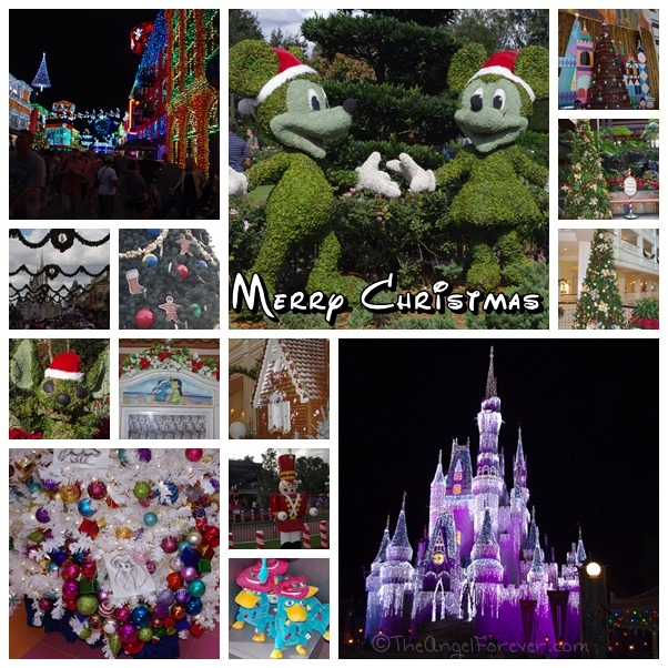 Walt Disney World at Christmas Time