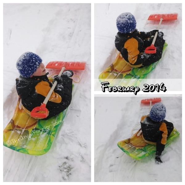 February 2014 sled fun