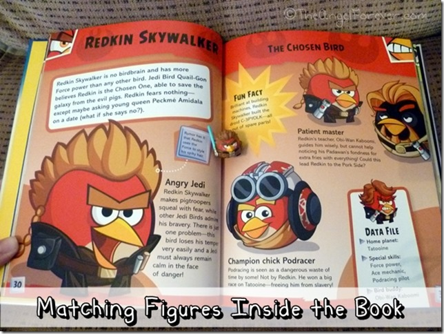 Inside Angry Birds Star Wars Character Encyclopedia