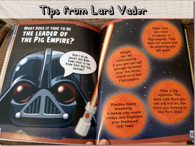 Tips from Angry Birds Star Wars characters