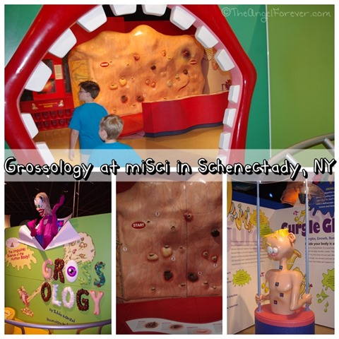 Going into Grossology at miSci NY