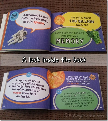 Inside the Fact of Fib books by Kathy Furgang