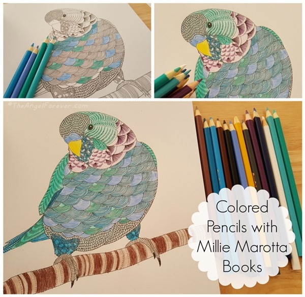 Colored Pencils with Millie Marotta Books