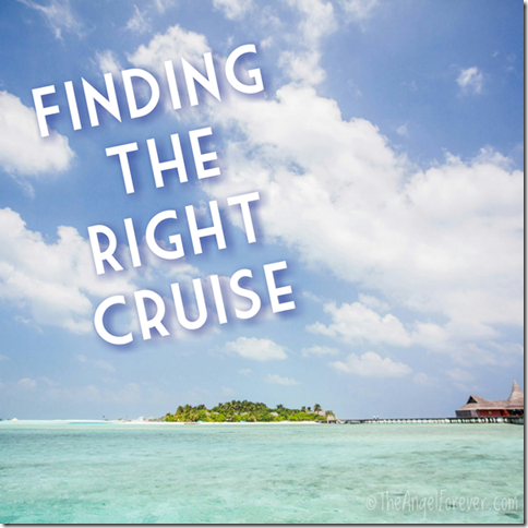 Finding the Right Cruise