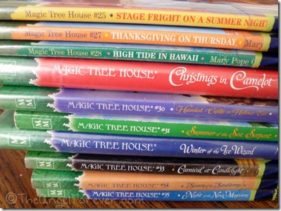 Some Magic Tree House Books