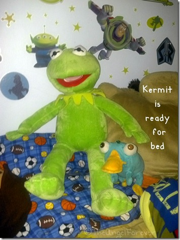 Kermit the Frog at Home