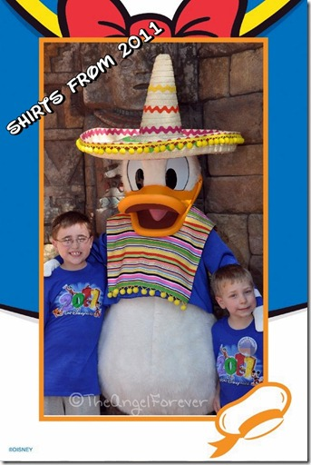 Disney Shirts and Donald Duck