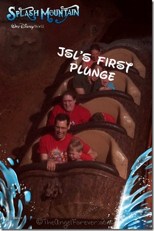 Splash Mountain Photo