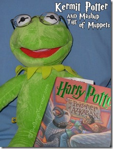 Harry Potter and Kermit the Frog meet