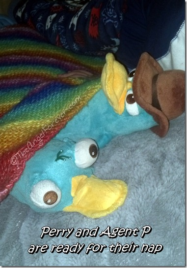 Stuffed friends take a nap