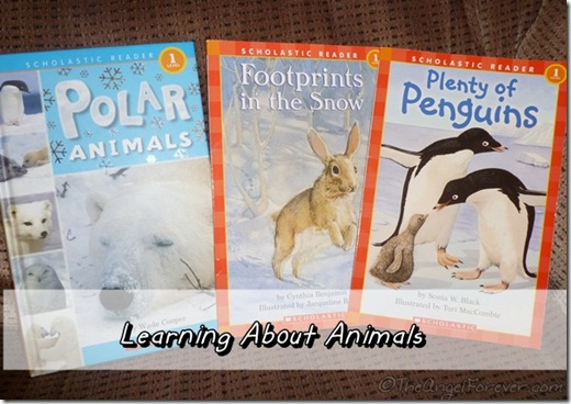 Early Reader about Animals