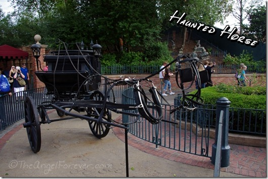 Horse outside of the Haunted Mansion