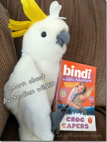 Tuesday Tales - Bindi Irwin Wildlife Adventures Croc Capers
