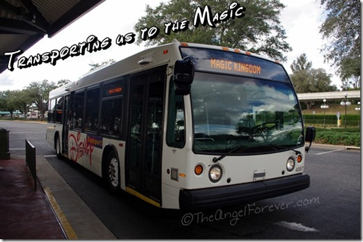 Walt Disney World Busing