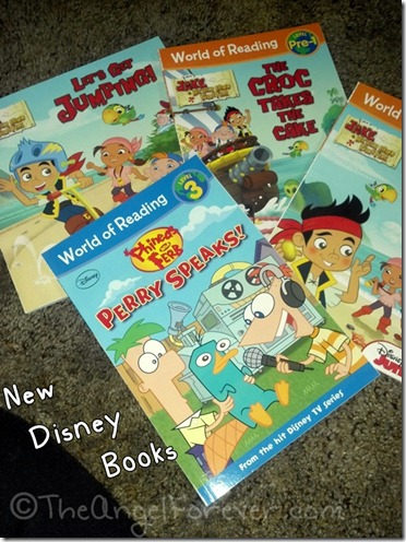Jake and the Never Land Pirate Books