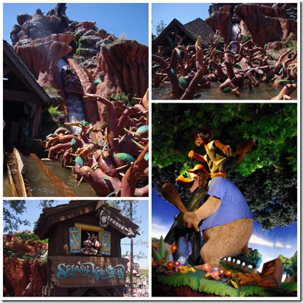 Views of Splash Mountain