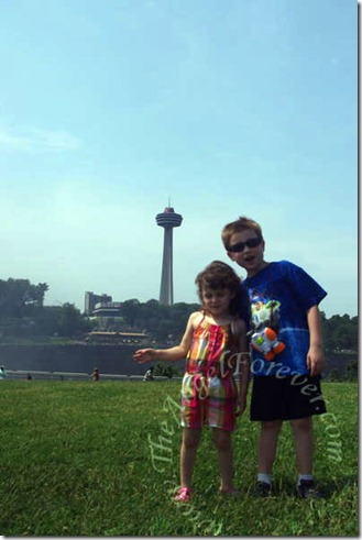 Fascinated With The Skylon Tower