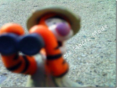 Tigger on Adventure