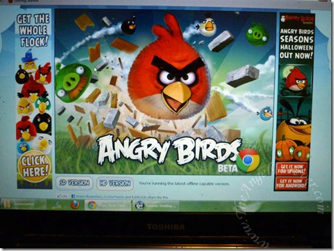 Do you play Angry Birds