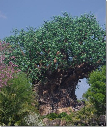 Hello Tree of Life