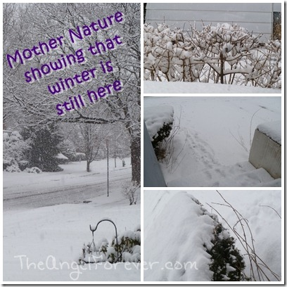 More from Mother Nature
