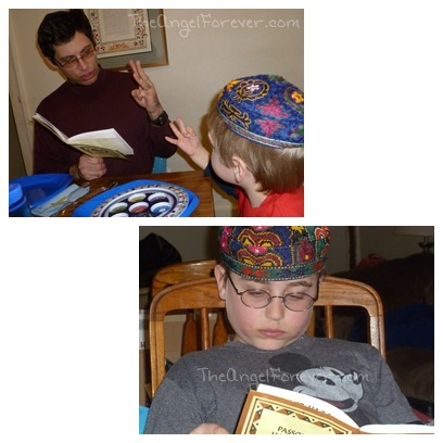 Seder Learning and Reading