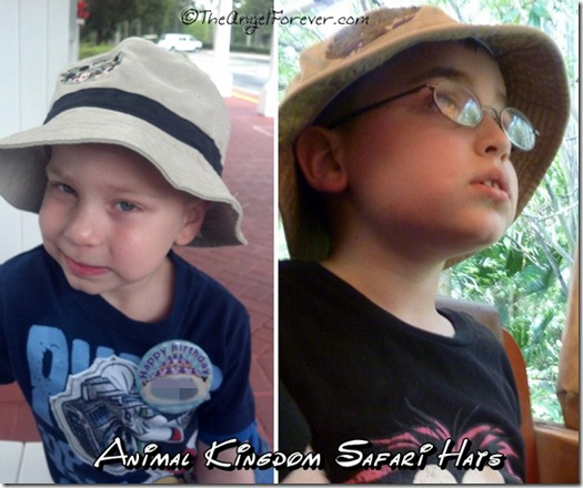 Animal Kingdom Safari Hats