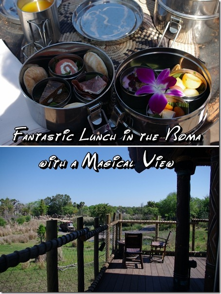 Lunch at the Boma in the African Savannah