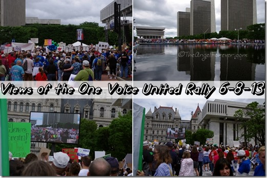 Views of the One Voice United Rally 6-8-13