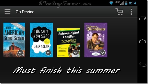 Books to finish reading this summer