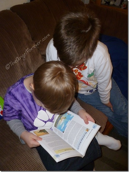 Brothers reading together