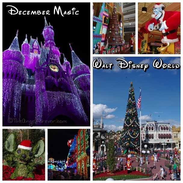 December at Walt Disney World
