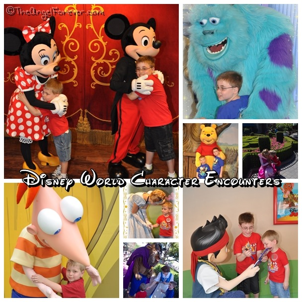 Disney World Character Encounters