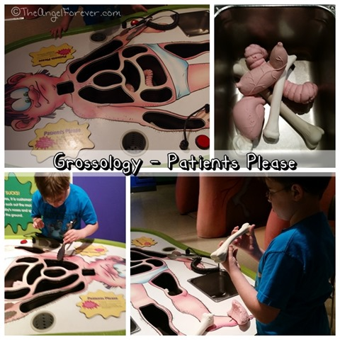Grossology Patients Please miSci NY