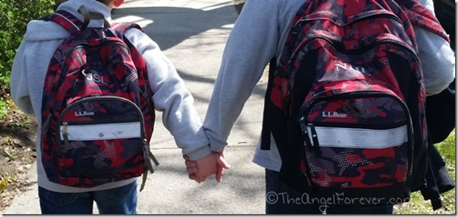 Brothers Holding Hands after School