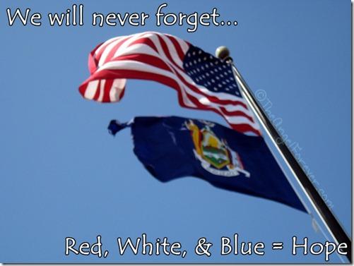 American flag for hope