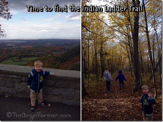 Thatcher Park looking for Indian Ladder Trail