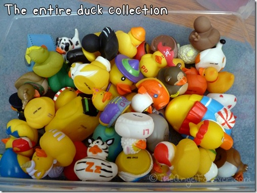 Larger Rubber Duck Collection
