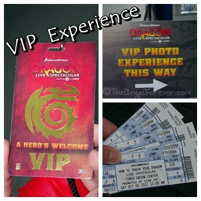 VIP Photo time - How to Train Your Dragon Live Show