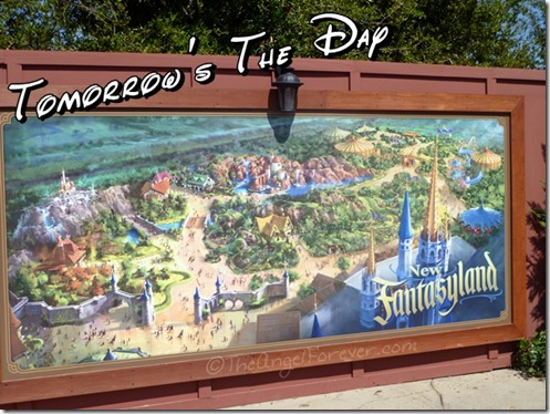 New Fantasyland Wall