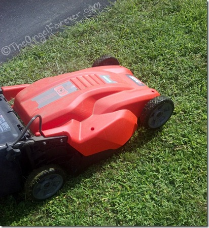 Green Grass and new lawn mower