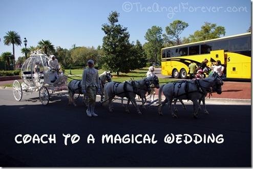 Disney Wedding Coach